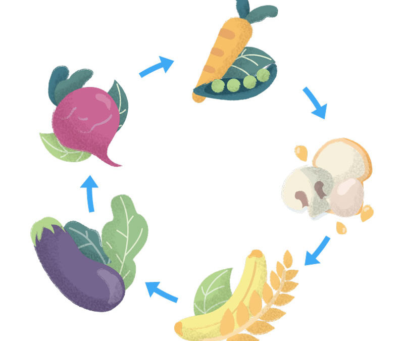 Organizzazione di un piano nutrizionale settimanale